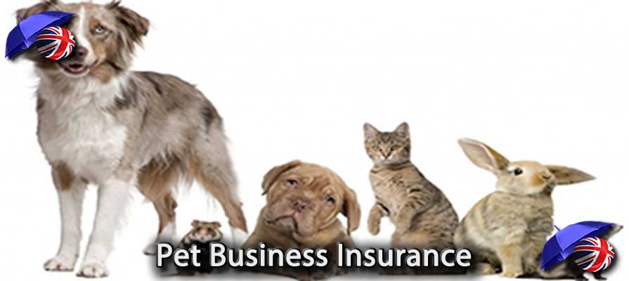 Pet Business Insurance UK Image