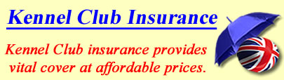 Logo of Kennel Club insurance UK, KC insurance quotes, KC cover UK