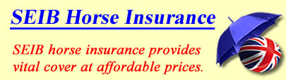 Logo of SEIB Horse insurance UK, SEIB horse insurance quotes, SEIB horse cover UK